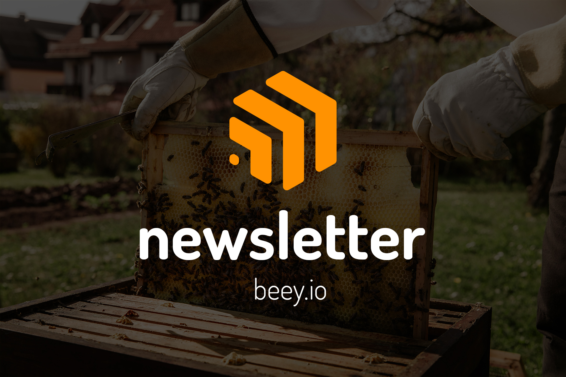 Beey newsletter: Is it true that humanity cannot survive without bees?
